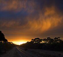 Virga Sunset by Matt Harvey