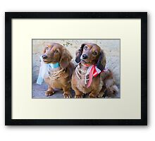 Pretty Puppies Framed Print