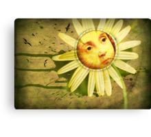 Frühlingserwachen Canvas Print
