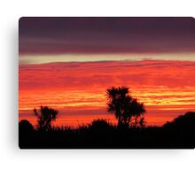 sunset trees silhouette red Canvas Print