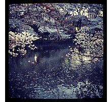 Tokyo flowers original photo Photographic Print
