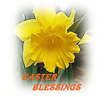 Easter Blessings Daffodil Photographic Print