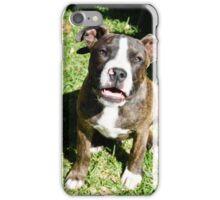 Dog. iPhone Case/Skin
