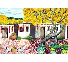 Southwest Garden Patio ~ Oil Painting Photographic Print