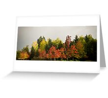 urban forest Greeting Card