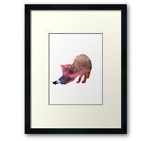 Galactic Cat Scratch Framed Print