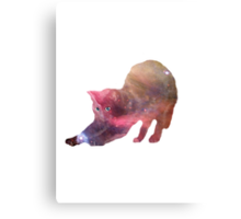 Galactic Cat Scratch Canvas Print