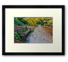 Fall Walks Framed Print