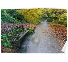 Fall Walks Poster