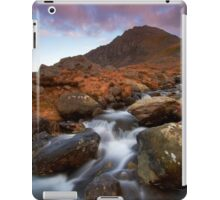 Cascading Down iPad Case/Skin