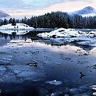 a winter mood by VickiOBrien