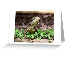 Water Dragon in Backyard Greeting Card