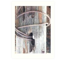 Wire, Wood and Rust Art Print