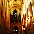 Inside the Muenster, Ulm - Germany by Bine
