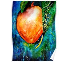Tropics...The Mango Tree Poster