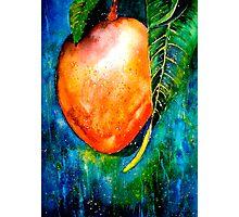 Tropics...The Mango Tree Photographic Print
