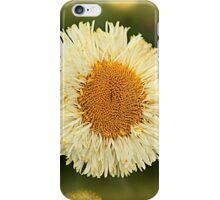 Daisy Dayz iPhone Case/Skin