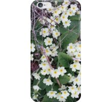 Primroses in the Undergrowth iPhone Case/Skin