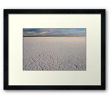 Laguna Tebinquinche Framed Print