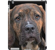 a dog named Lucifer iPad Case/Skin