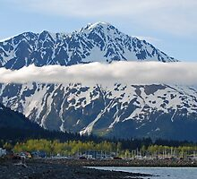 Seward ~ Alaska by Barbara Burkhardt