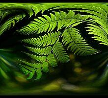 A Swirl of Light by GerryMac