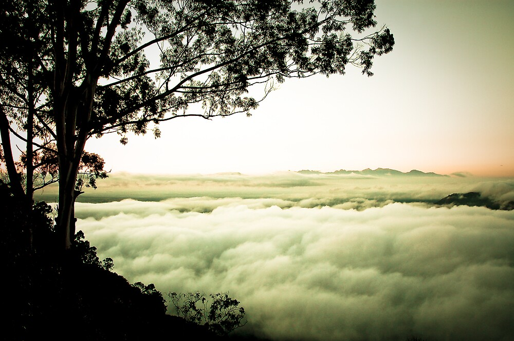 Above the Clouds, Zomba, Malawi by Tim Cowley