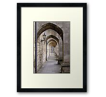 Arcade of modern flying buttresses, Winchester Cathedral, southern England Framed Print