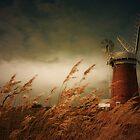 Horsey Mill, Norfolk by Ian Flindt