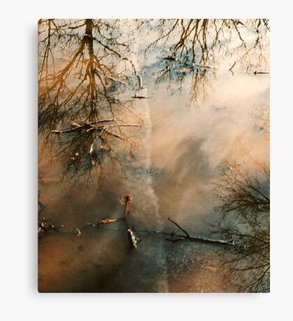 hope floats Canvas Print
