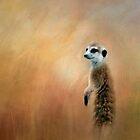 Meerkat. by Lyn Darlington