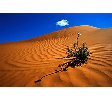 Perry Sand Dune Photographic Print