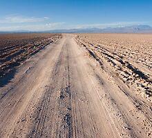 Salar de Atacama  by Ivan Ilarionov