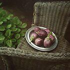 Eggplants  by lucindadodds