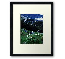 Flowers/ mountains Framed Print