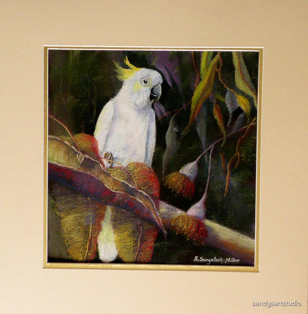 Midnight Watch    Sulphur Crested Cockatoo by sandysartstudio