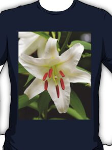 Closeup of a Lovely Easter Lily T-Shirt