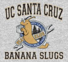 UC Santa Cruz Banana Slugs by youveseenthese