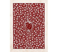rose vine and human heart Photographic Print