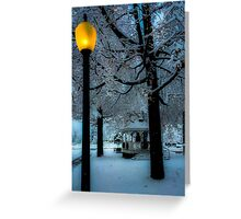 Holiday Time in Juckett Park Greeting Card