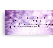 Birds on a wire.... Canvas Print