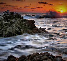 Sunset Seas by Barbara  Brown