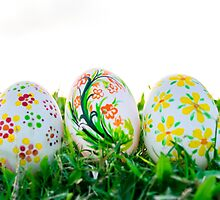 Row of Easter Eggs with Daisy on Fresh Green Grass by ngocdai86