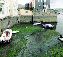 Washed up in Falmouth Harbour by Ludwig Wagner