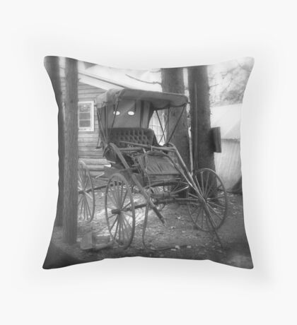 The Buggy Throw Pillow