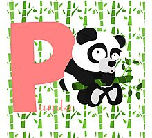 p for panda Photographic Print