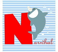 n for narwhal Photographic Print