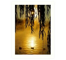 Sunbather Ducks Art Print