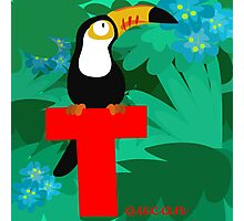 t for toucan Photographic Print