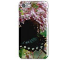 Black Swallowtail in fractalius iPhone Case/Skin